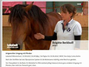 Artgerechter Umgang mit PferdenLokalzeit Münsterland 10.08.2021